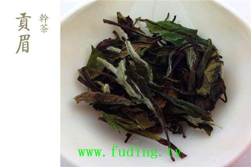 fudingbaichagongmei01