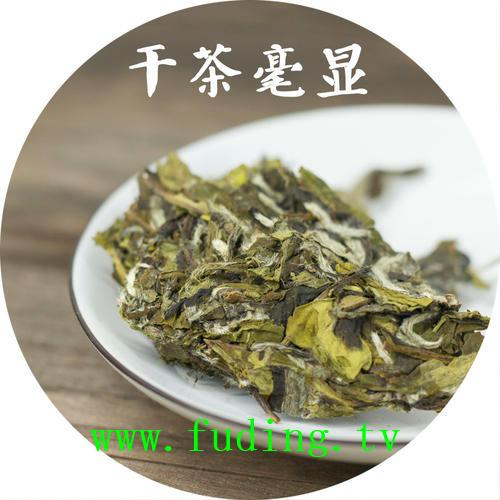 fudingbaichagongmei56