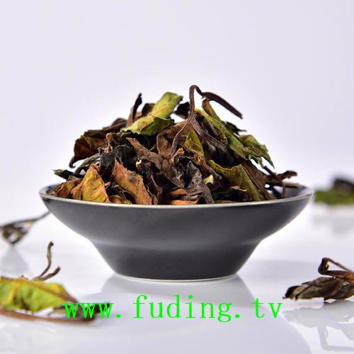 fudingbaichagongmei63