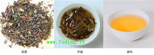 fudingbaichashoumei36